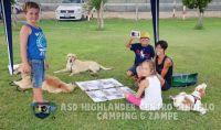 Camping6Zampe10_risultato