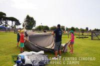 Camping6Zampe4_risultato